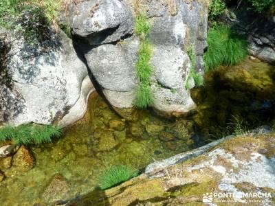 Tejos Valhondillo, Barondillo; viaje naturaleza;rutas montaña madrid;puente san jose;mapas de madri